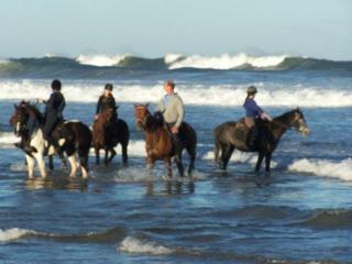 Cooling horses off in the ocean on a Wild Coast Horse Trail