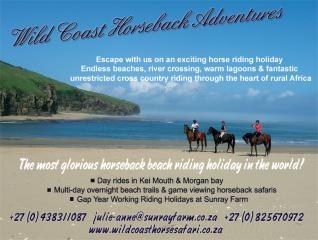 Horse Riding Holidays on the Wild Coast