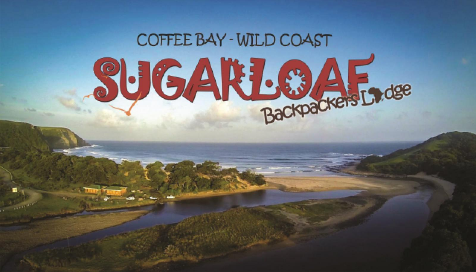 Sugarloaf Backpackers Wild Coast
